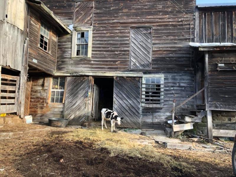 Quimby farm 3